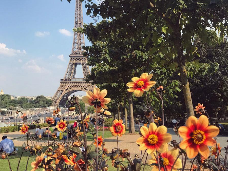 5 lugares que amo e sempre repetirei em Paris